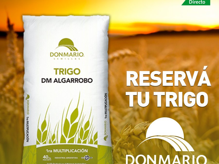 Trigo DONMARIO ALGARROBO FUSTE CEIBO