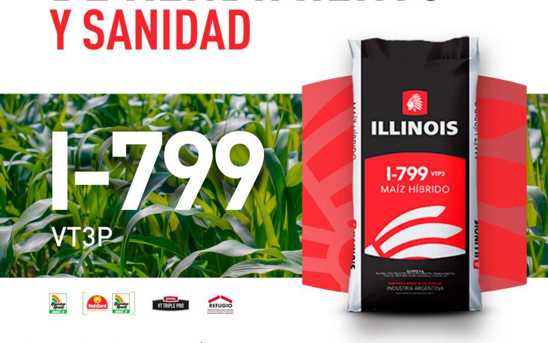 Maíces Illinois en YPF Agro Guazzaroni Greco